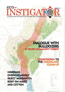 Cover of Eco-Instigator 11